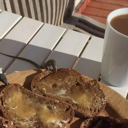 Bij het ontbijt, hagedissen houden ook van honing op brood